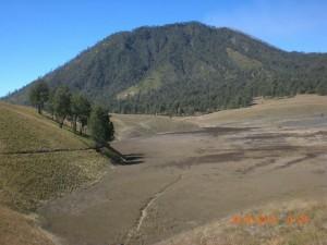 #PendakianGunungSemeru Oro-oro Ombo Cemoro Kandang
