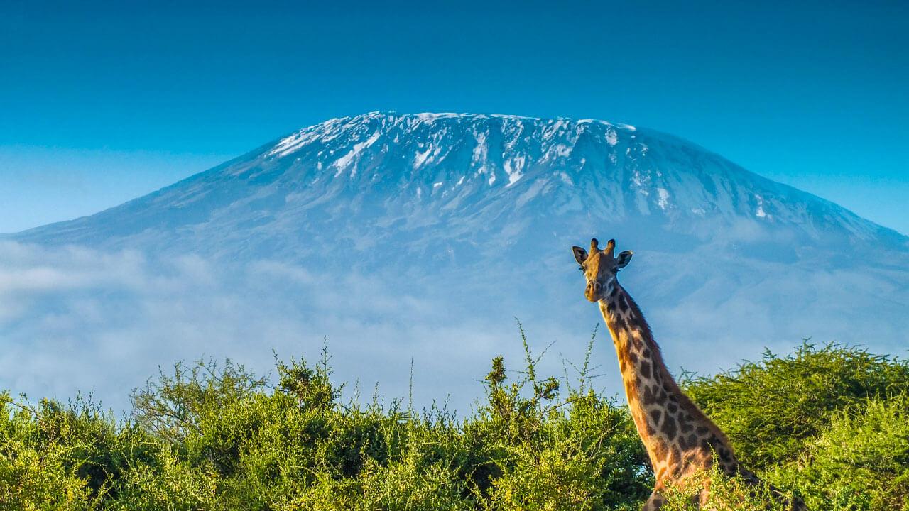 Sejarah dan Penamaan Gunung Kilimanjaro