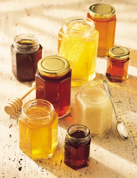 produk lebah trigona klanceng dan pengolahannya